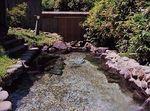 大丸温泉.jpg